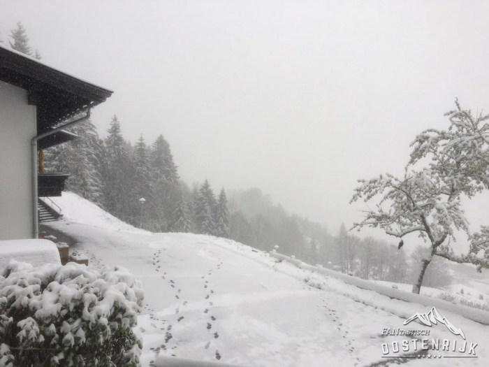 Brixen im Thale Leitenhof 5 mei 2019