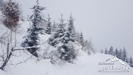 Sneeuw in het Brixental en Rondje Westendorf