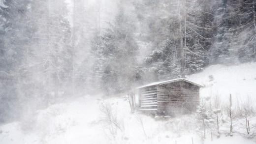 Sneeuwvalgrens is wel een dingetje