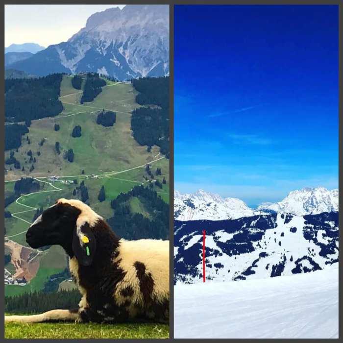 Foto's vanuit FO Saalbach zomer winter Ramona Barona