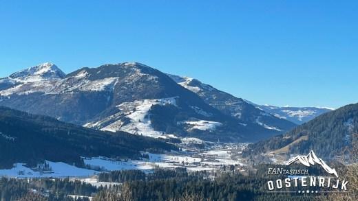 Pinzgau Topfoto