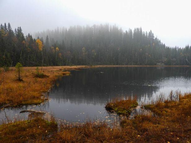 Store Otertjernet på Krokskogen - Oslomarka - Fantastiske marka