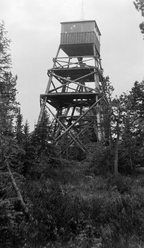 Julius Nygaard - Skjennungsåsen - Anno Norsk Skogmuseum - 1932