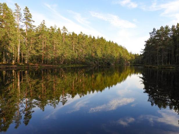 Solbergvannet i Østmarka - Oslomarka - Fantastiske marka
