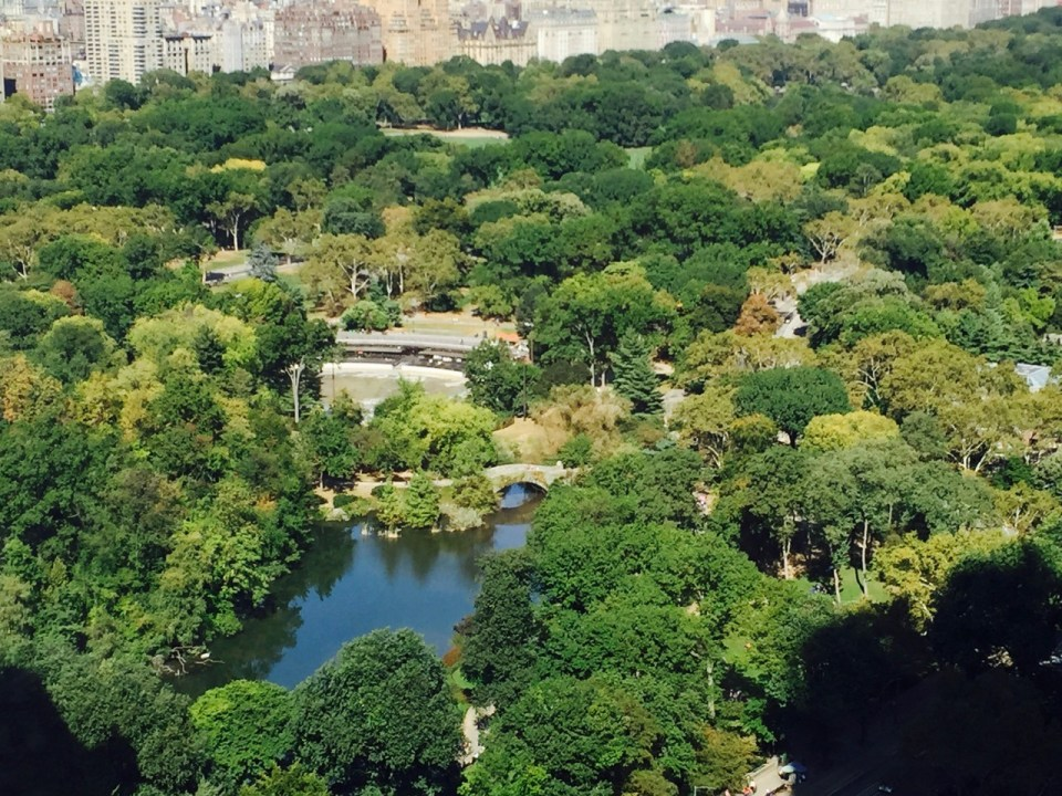 Fantasy Aisle, Central Park, the heart of New York City