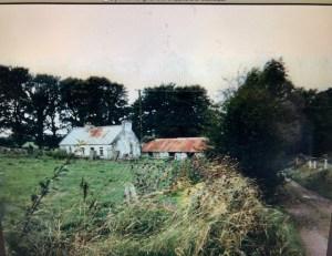 Fantasy Aisle, The Glynn Family Farm, Ballyhaunis, County Mayo Ireland