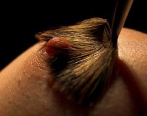Nipple Series - Brush Strokes