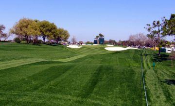 2019 Arnold Palmer Invitational DFS Golf FanDuel Picks