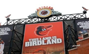 2021 Dynasty Baseball Prospect Profile: Hudson Haskin