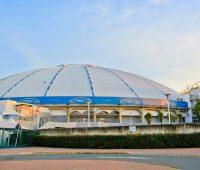 The Dome South Africa Fantomdan
