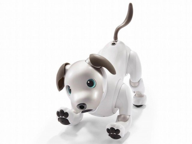 Sony Aibo AI-infused robot dog