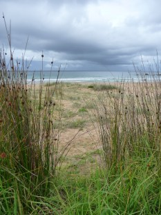 Grass, beach and stormy sky