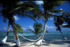 Reef Villa View