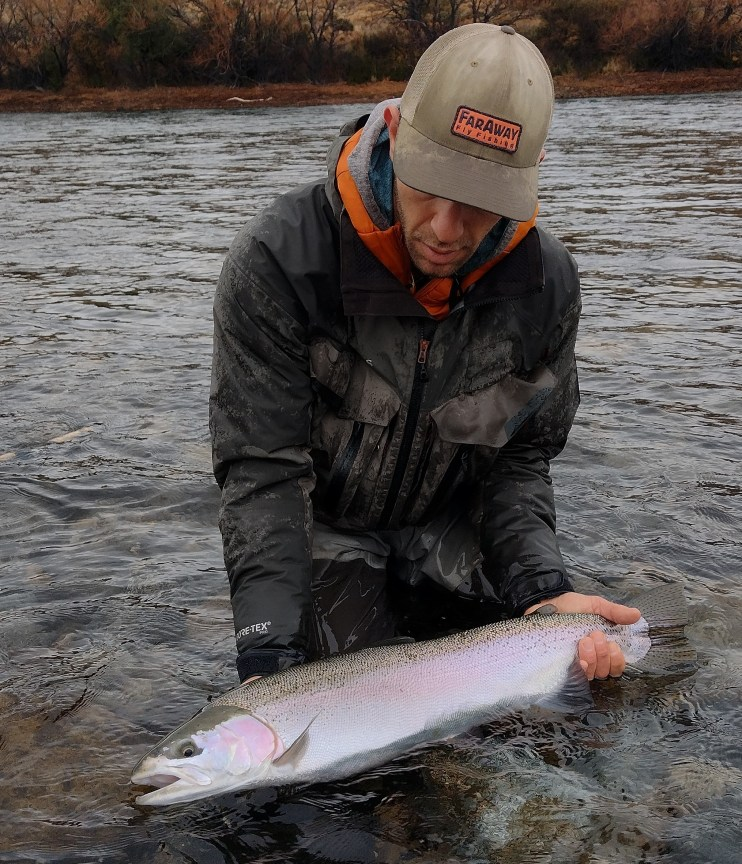 Limay River Silver Rainbow Trout