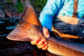 Kola Reserve - fall fishing