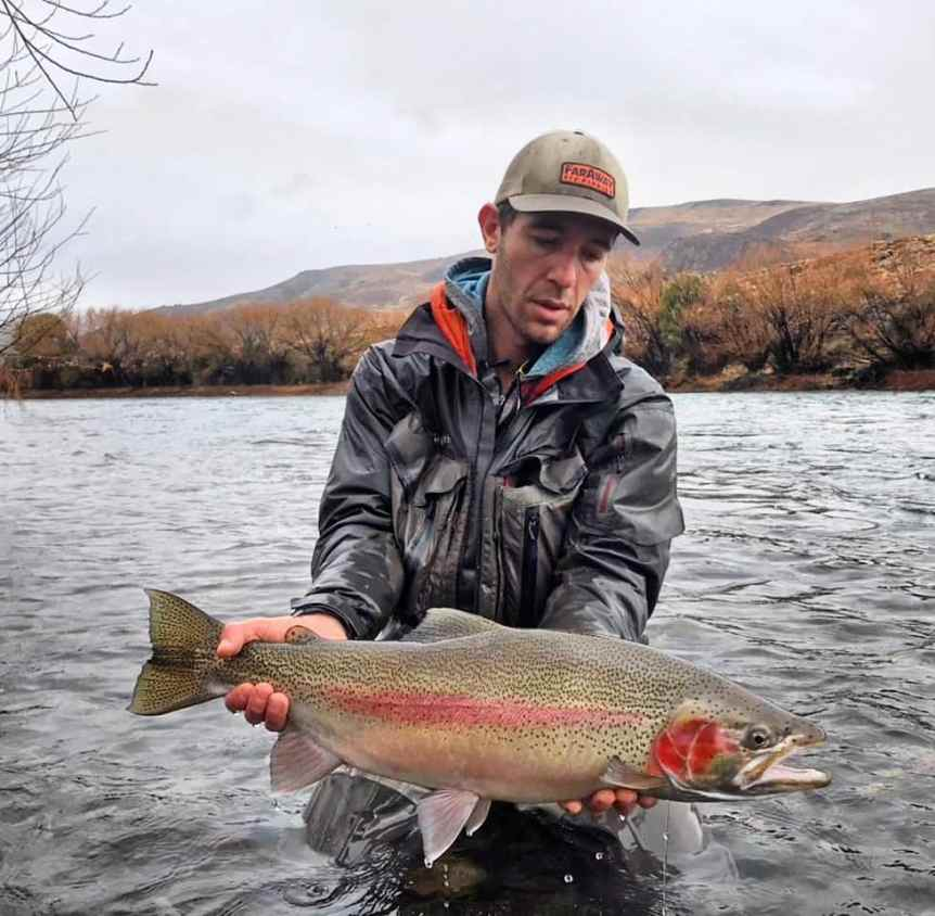 Limay River Rainbow trout