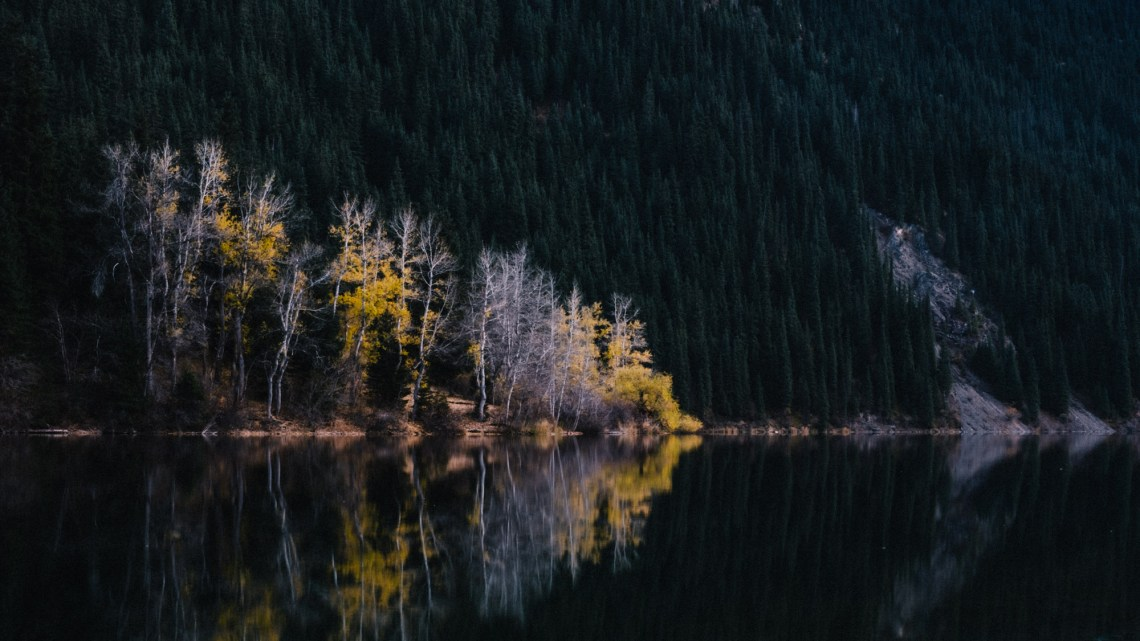 Beautiful colored trees reflecting in Kolsai Lake near Almaty, Kazakhstan