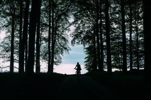 Bikepacking in Häckeberga nature reserve in South Sweden