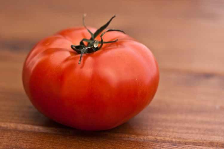 Solmogna tomater ger en klassisk grekisk sallad sin smak
