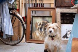 Im Vordergrund: Fritz, im Hintergrund: Rusty, Pastellkreidezeichnung Foto: Bärbel Recktenwald
