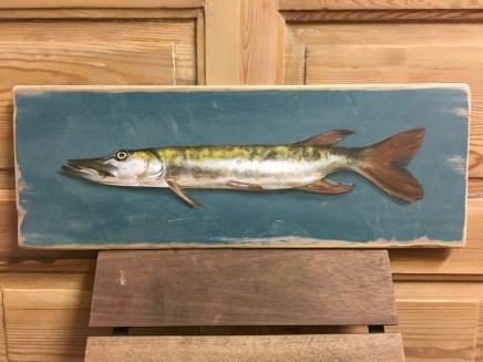 Hecht, Acryl auf Holz ca 35x20cm Pike