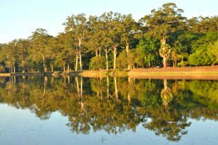 The pond surrounding Angkor Wat