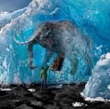 Des carcasses de mammouths prises dans la glace