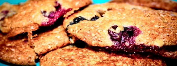 Biscotti ai mirtilli e cioccolato bianco