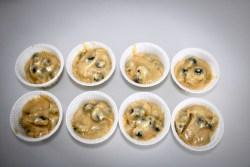 Muffin di farro con yogurt e mirtilli, farinaeuova