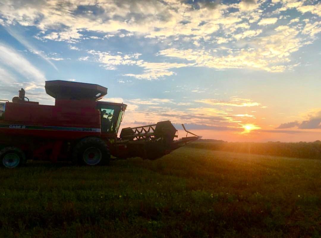 farm 2 bowl oat harvest