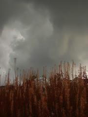 clouds...... part 1