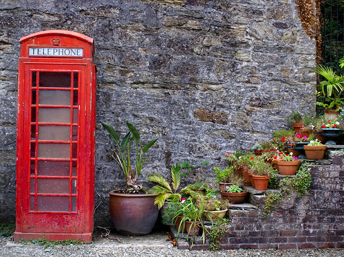 A picture of a red phone box and some plants