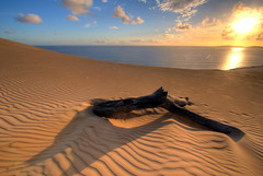 Desert meets the sea