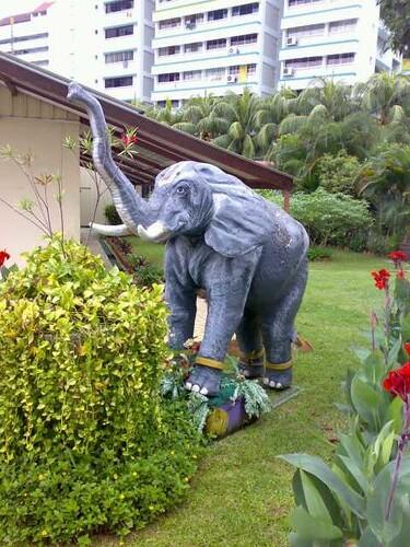 srivaishnava elephant,Singapore