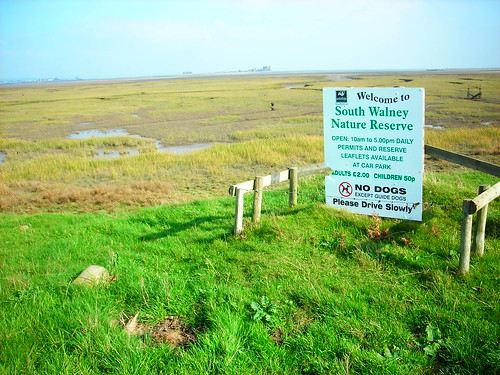 Across the last bit of marshes