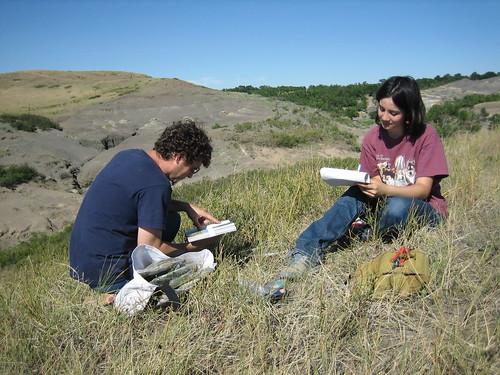 Grass Survey