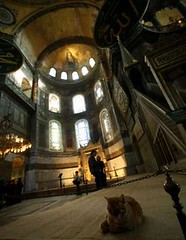 Hagia Sophia- visitors admire Byzantinian mosaics and the largest Ottoman calligraphies