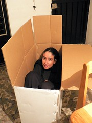 The only thing you can do when a cardboard box...