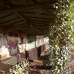 Am alten Bahnhof Schwartau-Waldhalle