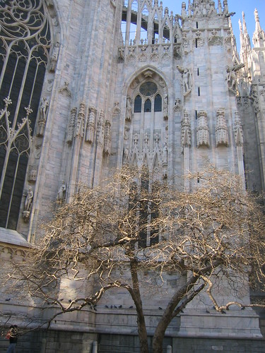 The Duomo in Winter