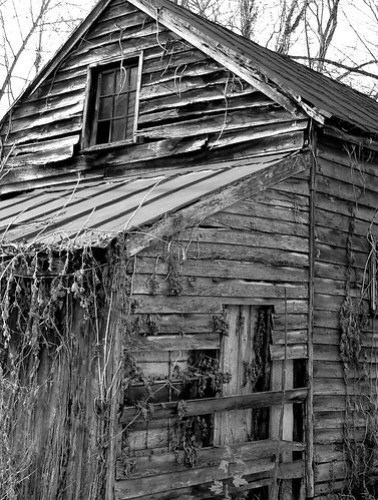 Old shed side 2 B&W by bobtravis
