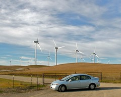 Windmills at Birds Landing with my Honda Civic Hybrid