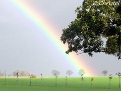 The magic rainbow