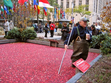 Cranberry Man