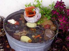 Darla's Water Fountain