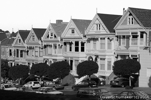 Painted Ladies in Black and White