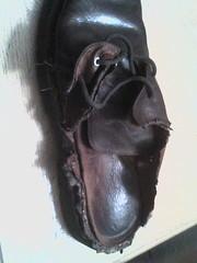 Chewed Up Shoe