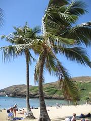 Honolulu trip2