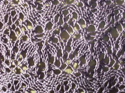 porcupine close-up