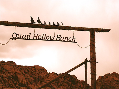Quail Hollow Ranch in Calico Basin